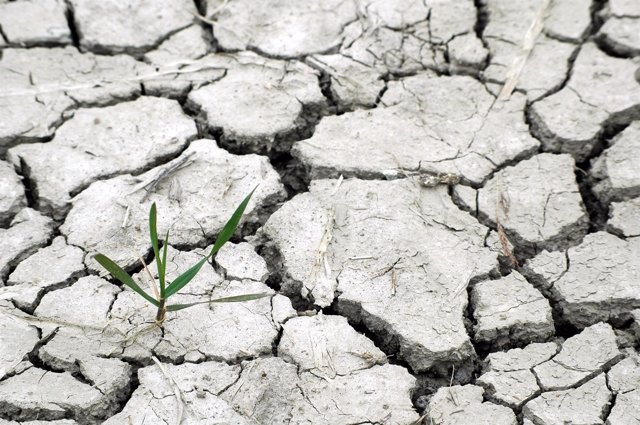 Cambio climático