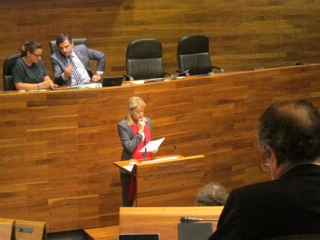 Cristina Coto en el debate de Orientación.