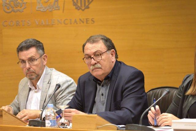 Narcís Vázquez en la Comisión de Sanidad de las Corts