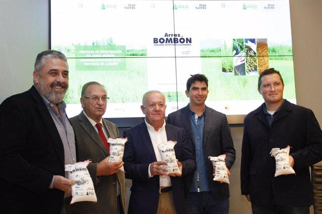 Diputación y Asaja recuperan la variedad de arroz bombón