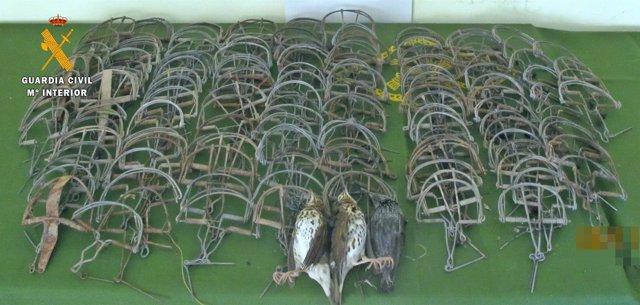 Cepos ilegales para la caza de aves incautada en Monterrubio de la Serena