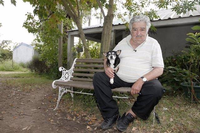 El ex presidente uruguayo José Mujica