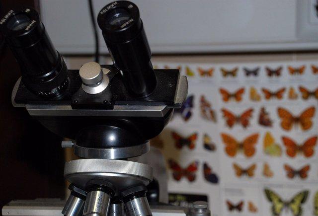 Laboratorio UCLM, Investigación