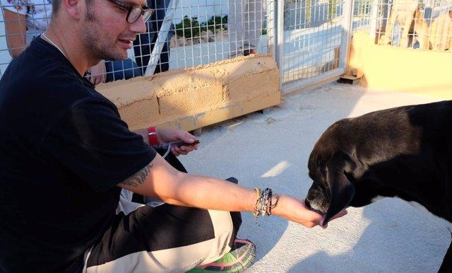 Programa mejora calidad de vida de personas sin hogar y animales maltratados