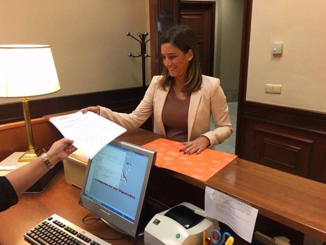 La diputada de Ciudadanos por Sevilla Virginia Salmerón, en el Congreso