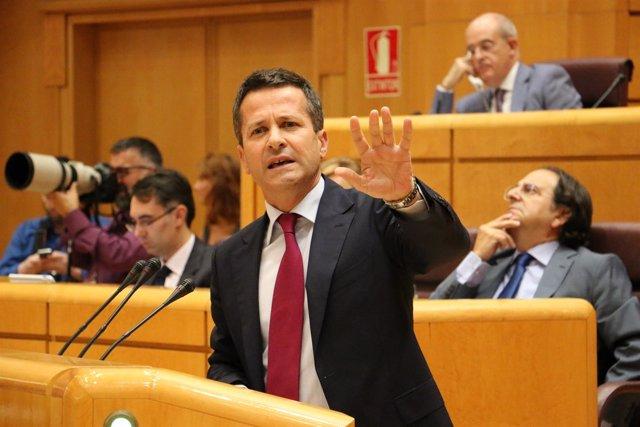 Jokin Bildarratz en el Senado