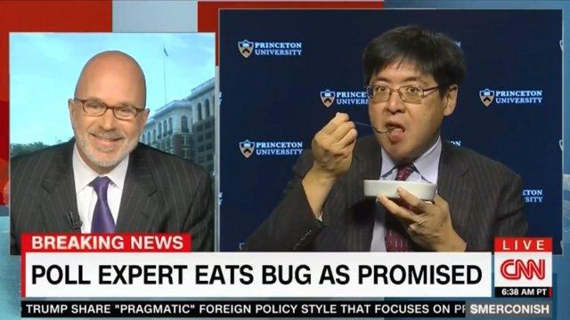 Sam Wang se come un insecto en directo