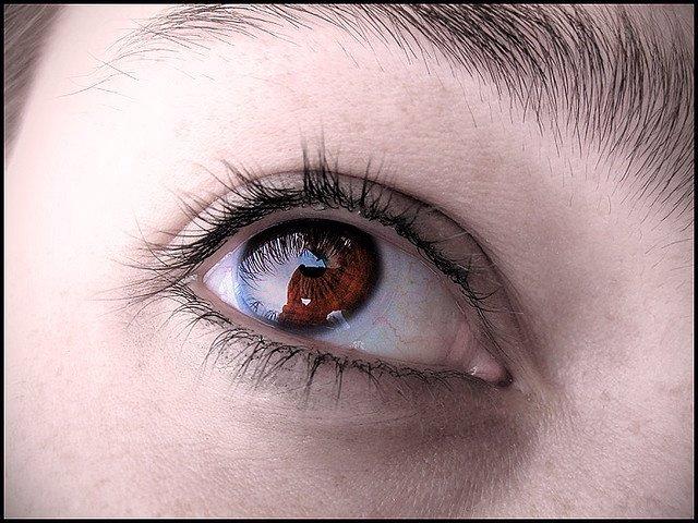 Ojo, vista, visión