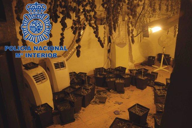 Droga en una vivienda okupada en Alcoy