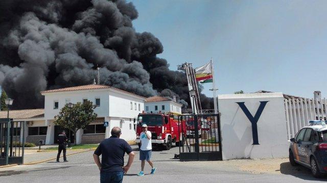 Incendio en fábrica de Ybarra en Dos Hermanas (Sevilla)