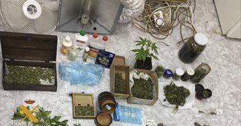 Detenido un joven de 33 años por cultivar marihuana en su domicilio de...