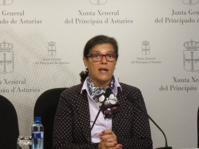 La diputada del PP de Asturias Carmen Pérez García de la Mata