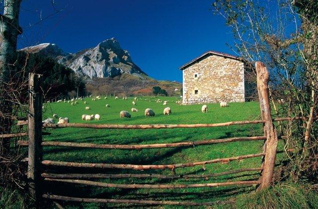 Casa Rural Kaardel en Navarra