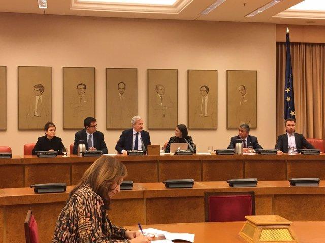Comisión Mixta de RTVE con el elegido presidente Emilio del Río