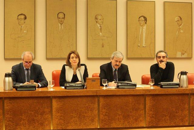Soraya Rodríguez en la comisión del Congreso