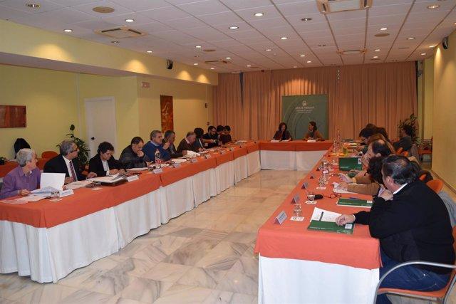 Reunión del Consejo Andaluz del Voluntariado