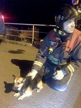 Bomberos De Tenerife Intervienen En El Rescate De Cuatro Senderistas En El Teide