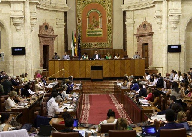Pleno del Parlamento andaluz durante la lectura de la declaración institucional