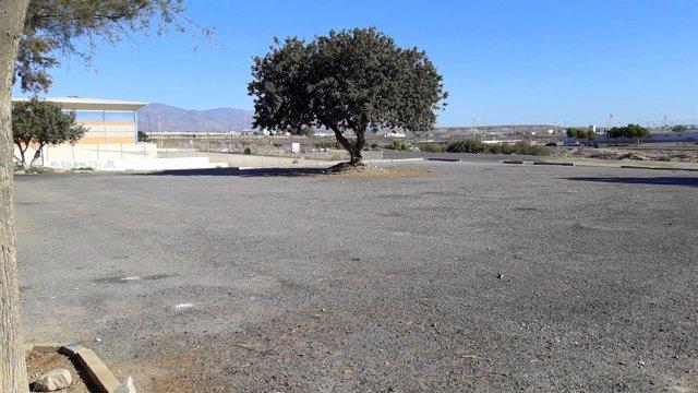 Zona de algarrobo del Parque de Pinos del Alquián en Almería