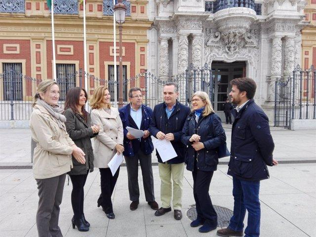El presidente del PP en Sevilla y concejales populares frente a San Telmo