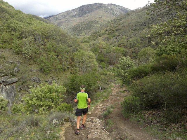 Carrera montaña