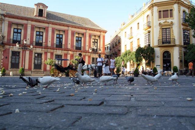 Palacio arzobispal de Sevilla.