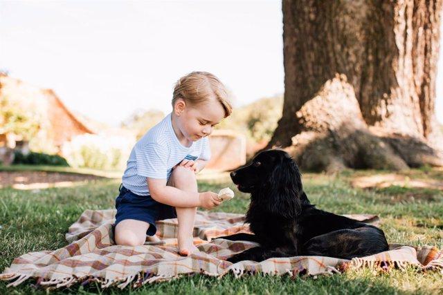 George con su perro Lupo