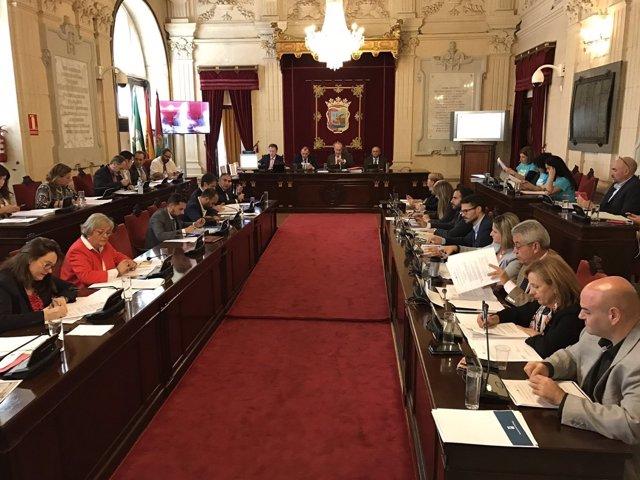 Pleno del Ayuntamiento de Málaga sesión de octubre