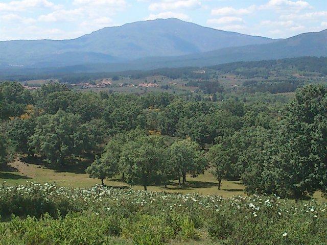 Paisaje De La Sierra De Gata (Cáceres)