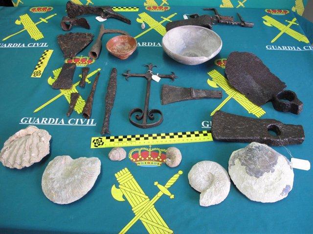 Piezas fósiles
