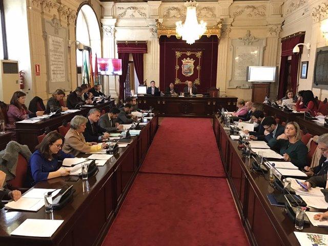 Pleno de Málaga. Noviembre 2016