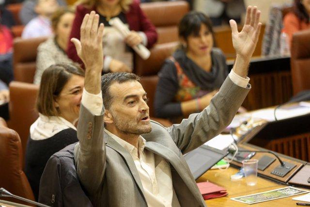 El líder de la formación de izquierdas en Andalucía, Antonio Maíllo