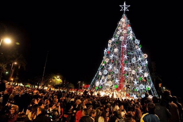 Árbol de Navidad, luces
