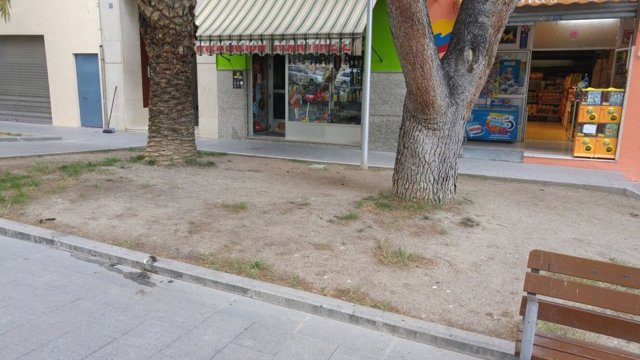 PSOE reclama mejoras en jardines junto con la asociación Europa de Jaén