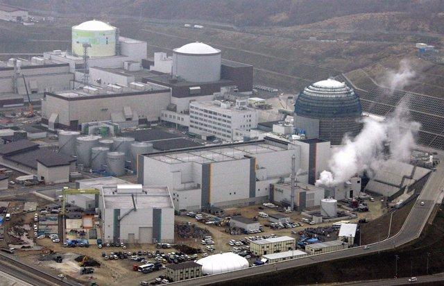 Apagón Nuclear Con El Cierre Los Reactores De La Central Nuclear De Tomari