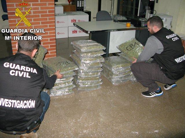 Marihuana intervenida en Almussafes