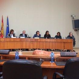 Constitución de las comisiones