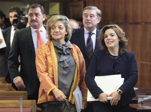 Soraya Saénz De Santamaría En El Senado