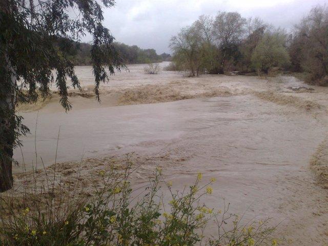Aspecto del Guadalquivir a su paso por Córdoba en las inundaciones de 2013
