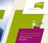 La inversión global en Internet de las Cosas crecerá un 15% en 2017, según Everis
