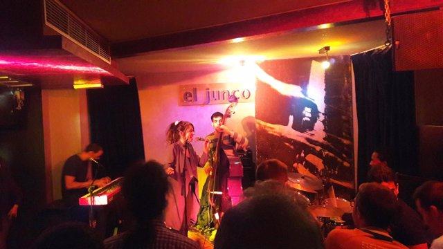 Sala de conciertos, El Junco