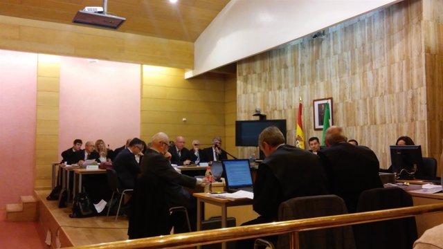 Peritos contraponen sus informes en el juicio del Caso Alhambra