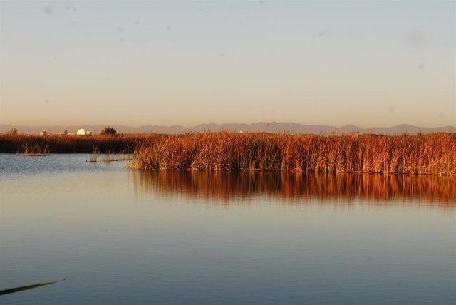 Imagen de archivo del lago de la Albufera