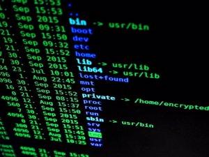 Las empresas pagan una media de 500 euros por recuperar sus datos tras un ataque de ransomware