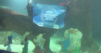 El Zoo Aquarium de Madrid presenta su Belén entre tiburones bajo el lema...