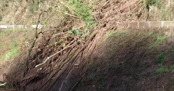 Técnicos y geólogos del Ayuntamiento de Bergara evalúan la situación tras...