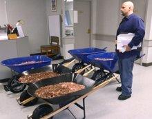 Indignado con la burocracia, terminó pagando con 300.000 monedas sus impuestos (DAVID CRIGGER / VIA HERALD COURIER )