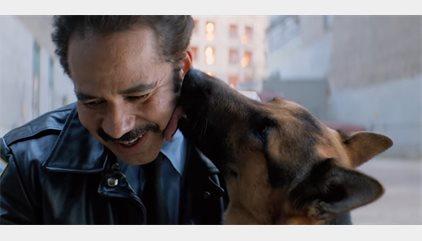 Un vídeo denuncia maltrato animal en el rodaje A Dog's Purpose, la nueva película de Josh Gad y Dennis Quaid