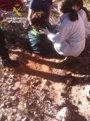Foto: Auxilian a una mujer que se precipitó por un talud en Cantoria (Almería)