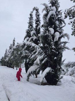 Ronda nieve frio temporal enero 2017